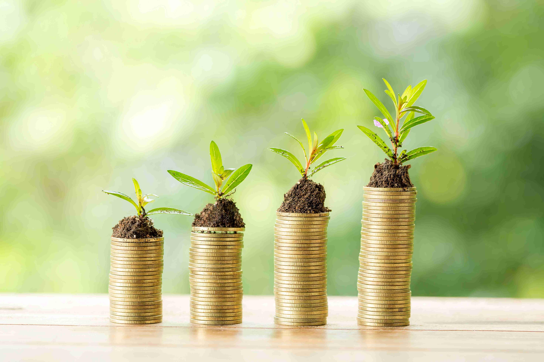Kenalan dengan Manajer Investasi Reksa Dana Yuk!