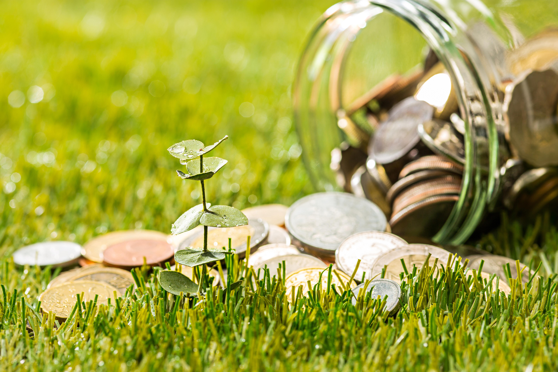 Reksa Dana 101: Cara Memilih Reksa Dana