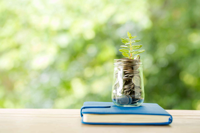 Hindari 5 Kesalahan Pemula dalam Investasi Reksa Dana